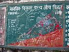 Binsar Tourist Map and Trekking Guide