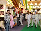 Visitors at Uttarakhand Pavilion
